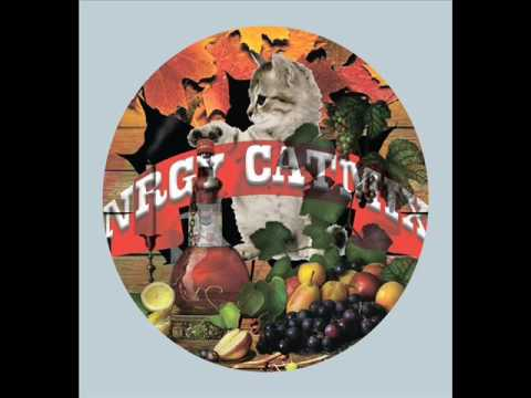 NRGy Radio Jingle POP DANCE Instrumental Jingle CATMIX 2016