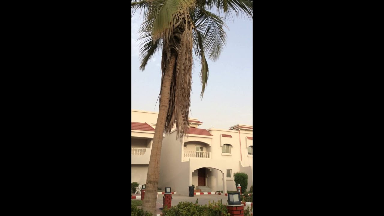 Typical Expat Housing Compound Accommodation in Saudi Arabia