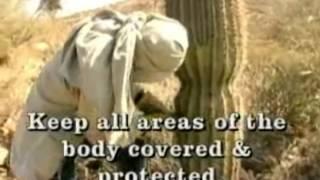 HOT LAND SURVIVAL: Aircrew Survival Training - Survivalist Desert Climate