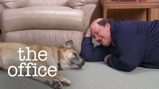 Kevin's Dog - The Office US