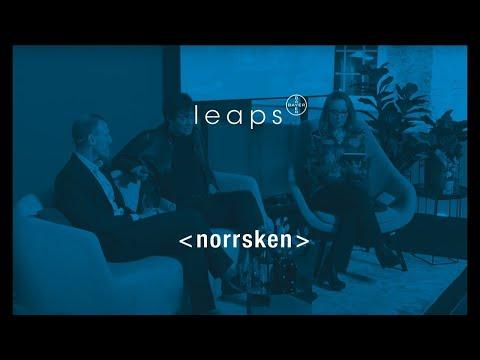 Leaps Talk #3: Max Tegmark | Hacking Humans @ Norrsken | LIGHTENING TALK