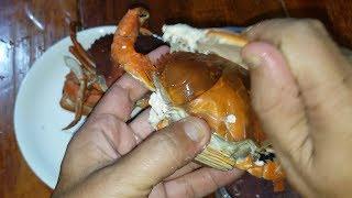 Đặc sản cua cốm, ngon nhất trong các loại cua biển Cà Mau
