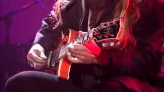 Zakk Wylde - A Song For You HD