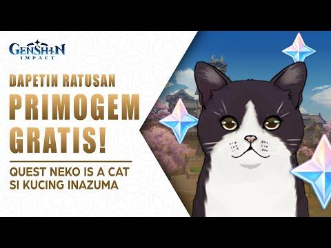 UPNEWS#31 - DAPETIN RATUSAN PRIMOGEM GRATIS! QUEST NEKO IS A CAT SI KUCING INAZUMA