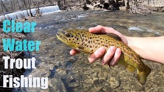 AMAZING Fishing in ULTRA CLEAR Water!!! (FIRST TIGER TROUT?!)