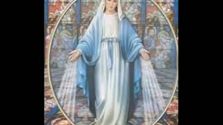 Ave Maria - Caccini - in arabic - السلام عليك يا مريم - hail mary