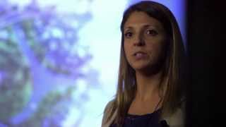 Biochar - the future of sustainable agriculture: Lauren Hale at TEDxUCR