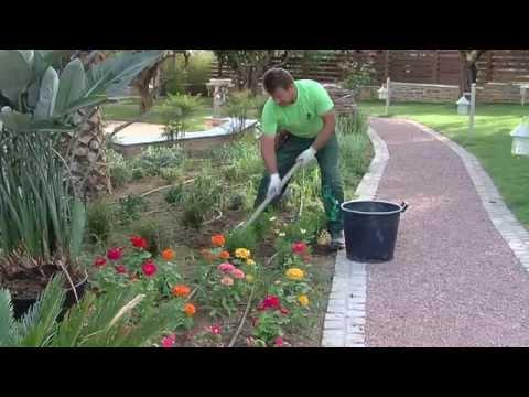 A special garden maintenance!