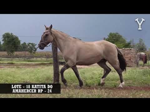 LOTE   18 KATITA DO AMAHERCER RP   24