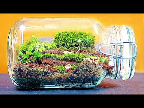 How To Make Big Enternal Terrarium Youtube