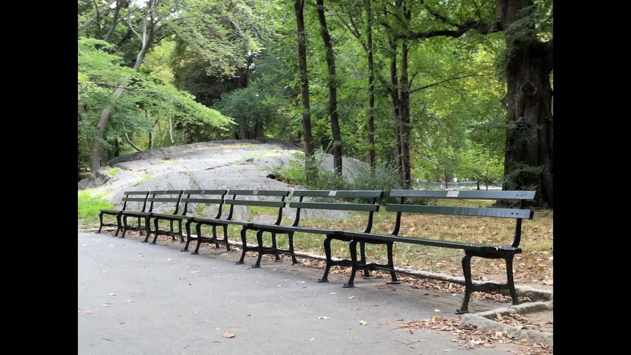 The Central Park Bench Project Youtube