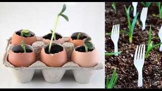 12 Totally Clever Gardening Tips & Tricks