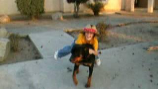 Funny Boy Rides Rottweiler Dog Gently.