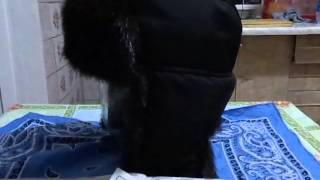Обзор самодельной шапки ушанки
