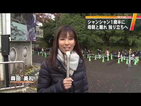 上野の新パンダ舎は6頭分に面積倍増 設計図を独自入手!