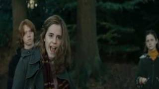 7 Things: Draco & Hermione