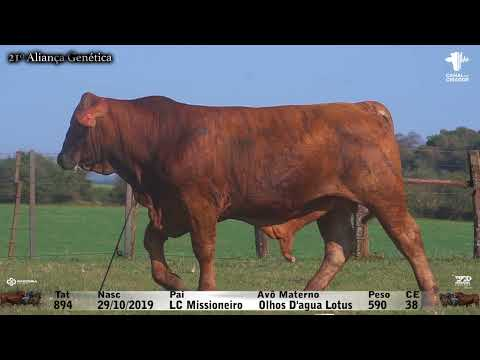 LOTE 050