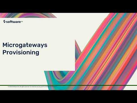 Microgateway Instance Based provisioning | webMethods.io API Gateway