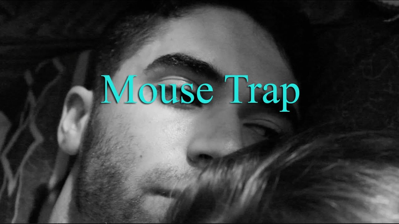 Best Mouse Trap Youtube