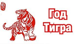 Год Тигра – описание и характеристика знака