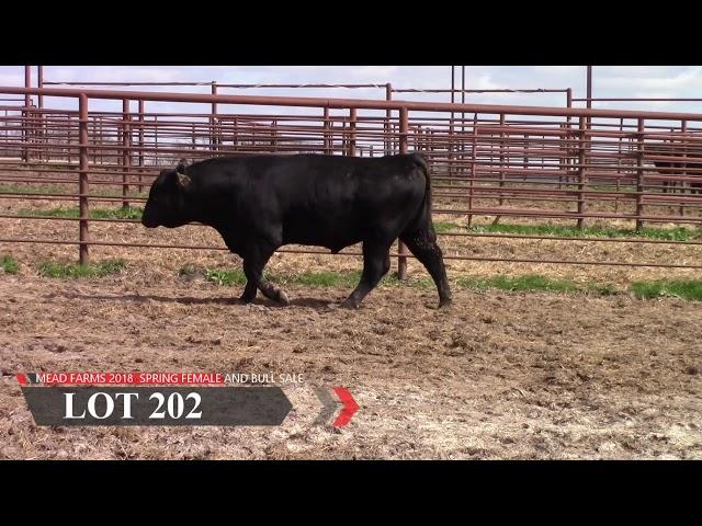 Mead Farms Lot 202