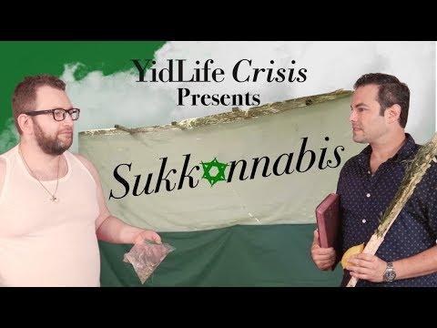 Season 3, Episode 1: Sukkannabis (YidLife Crisis)