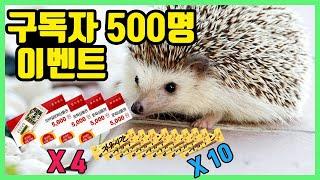 구독자 500명 이벤트 /해미월드의 동물들! / 햄스터…
