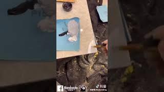 Cách sửa bàn ghé, sàn gỗ bị hư hỏng nhờ thức ăn hàng ngày. Hay quá