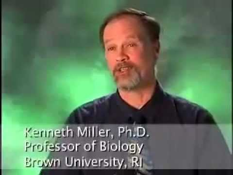Creationism - Hear the Scientists Respond