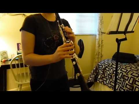 Lost Frequencies- Are You With Me (Clarinet Cover)