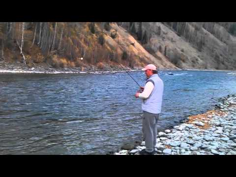 рыбалка в апреле на алтае видео