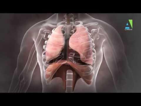 bronchopneumopathie chronique obstructive essoufflement hyperventilation
