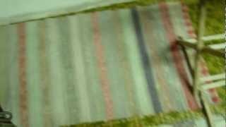 Beni Beagle  Odor Identification