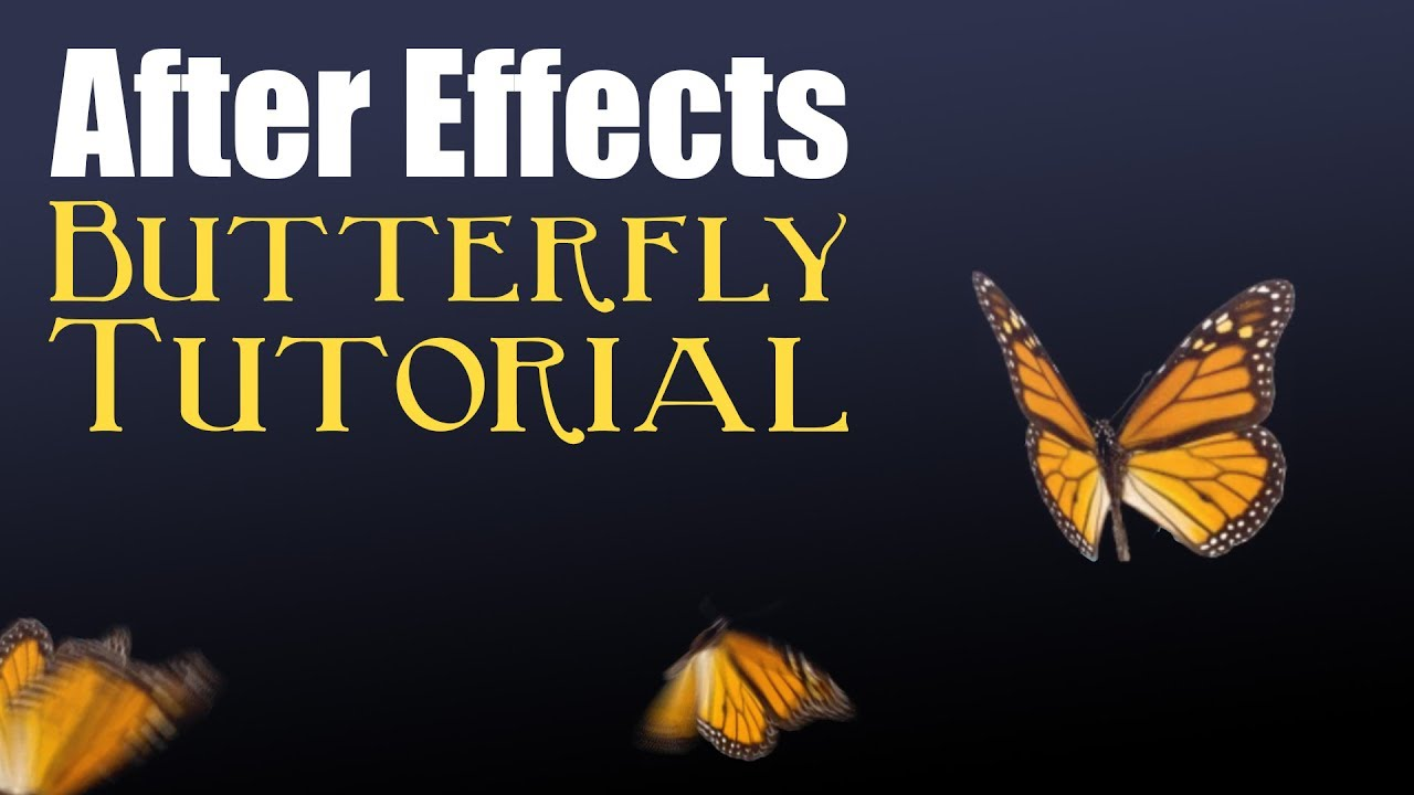 Butterfly - After Effects Tutorial