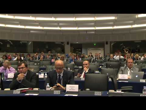 ALDE hearing   Hungary   The situation of democracy, rule of law and fundamental rights