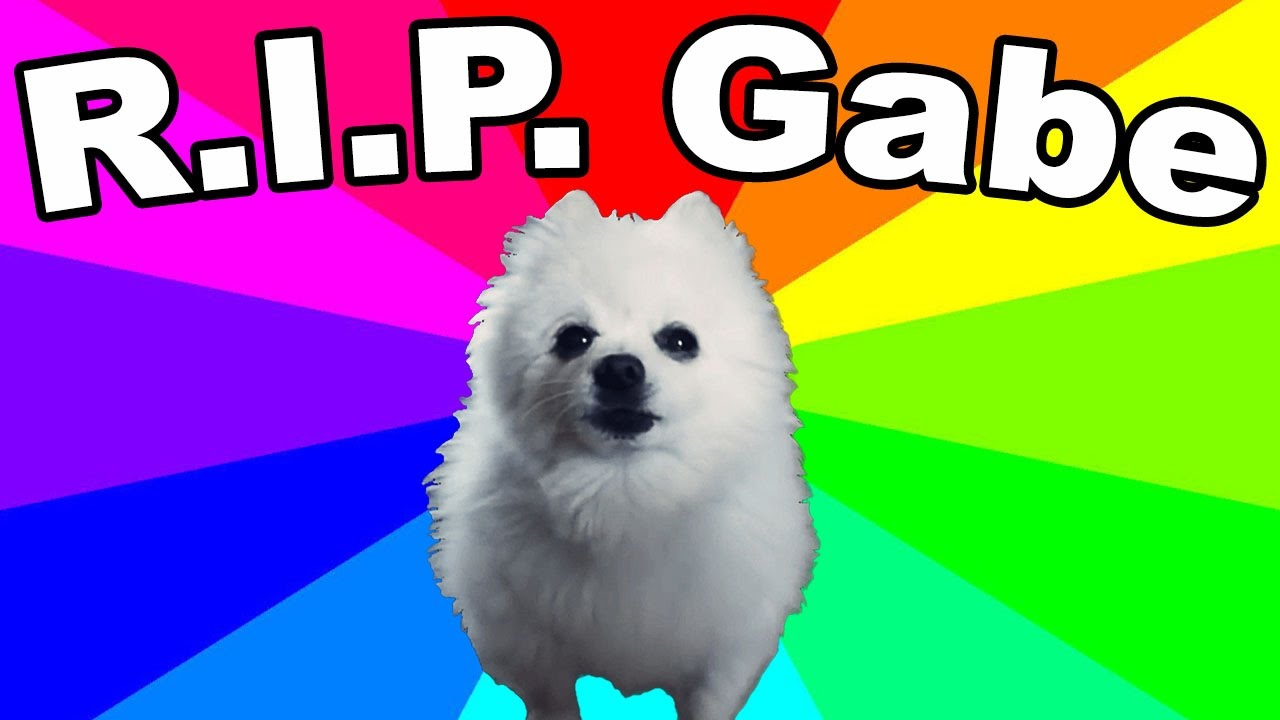 gabe the dog is dead