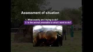 02 Assessment of situation