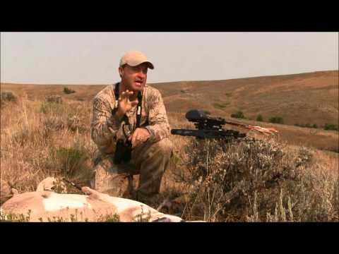 Mark Kayser - Pronghorn Bowhunting 101 - Pronghorn Antelope Archery Tips