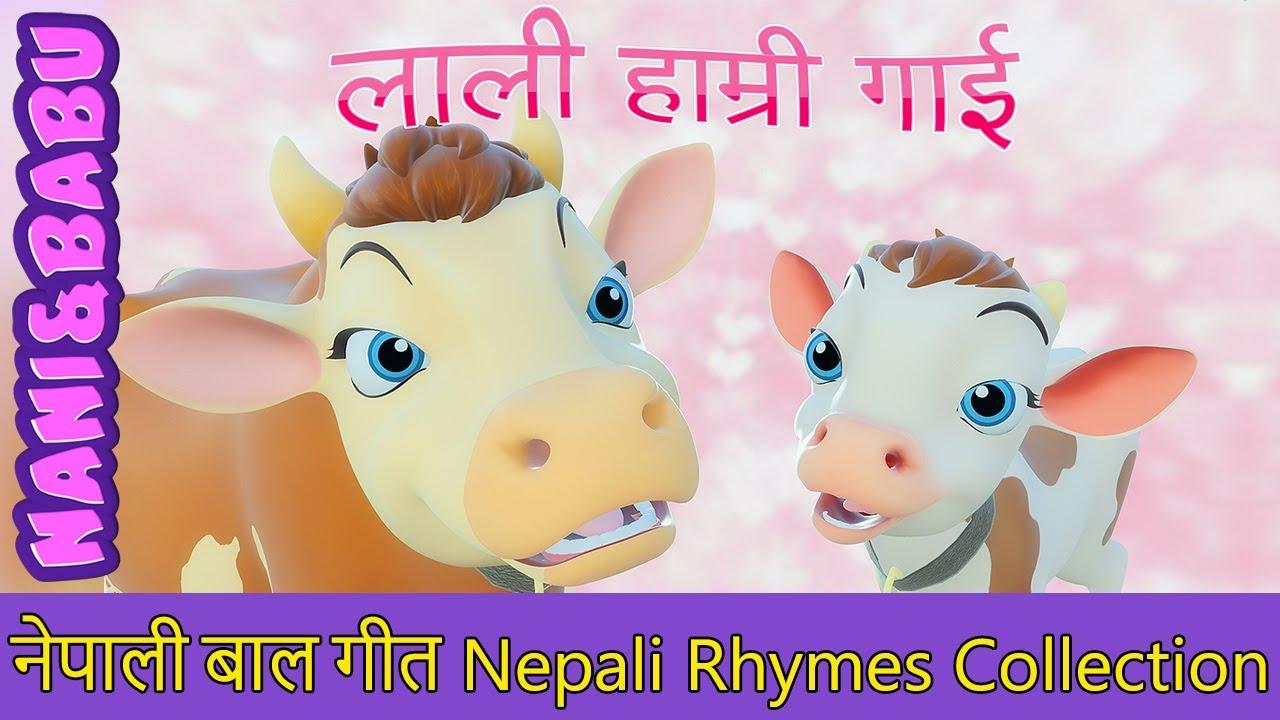 Download Lali Hamri Gai लाली हाम्री गाई | Nepali Rhymes Collection | लोक प्रिय नेपाली बाल गीत