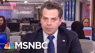 Anthony Scaramucci Responds To President Donald Trump's State Of The Union Address | MSNBC