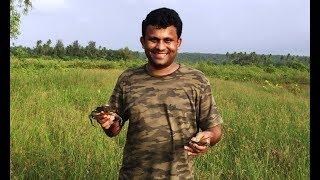 Crazy Crab (खेकडा) Hunting at Mithbav #Konkan