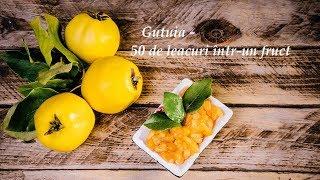 Gutuia - 50 de leacuri într-un fruct (Leacuri&Sfaturi Despre Sanatate)