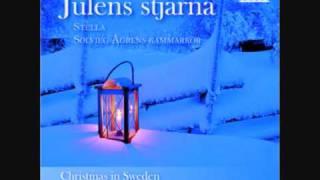 Stella Chamber Choir - Jul, jul, strålande jul