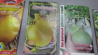 Лук репчатый, семенами , обзор и краткая характеристика сортов.