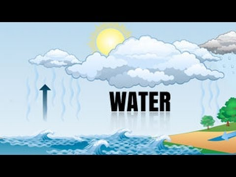 What is the water cycle class 7 geography youtube what is the water cycle class 7 geography ccuart Image collections