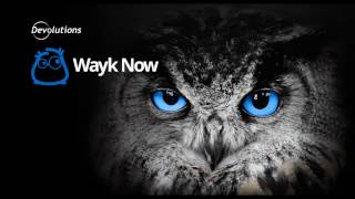 Overview - Wayk Now