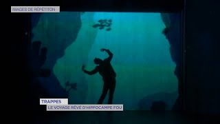 Yvelines | Trappes : Le voyage rêvé d'Hippocampe Fou