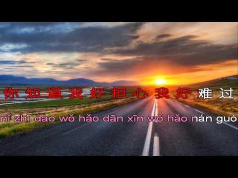 Zhu Ni Yi Lu Shun Feng 祝你一路顺风 Nicky Wu Pinyin Karaoke