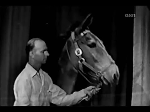 What's My Line? - Francis the Talking Mule (Aug 3, 1952)