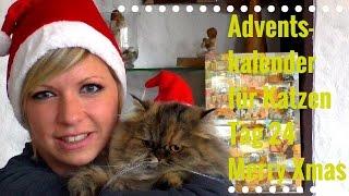 Adventskalender für Katzen Tag 24  Cat Activity Snack-Box - Weihnachten